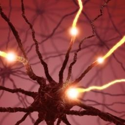Scientists identify neural mechanism responsible for chronic pain