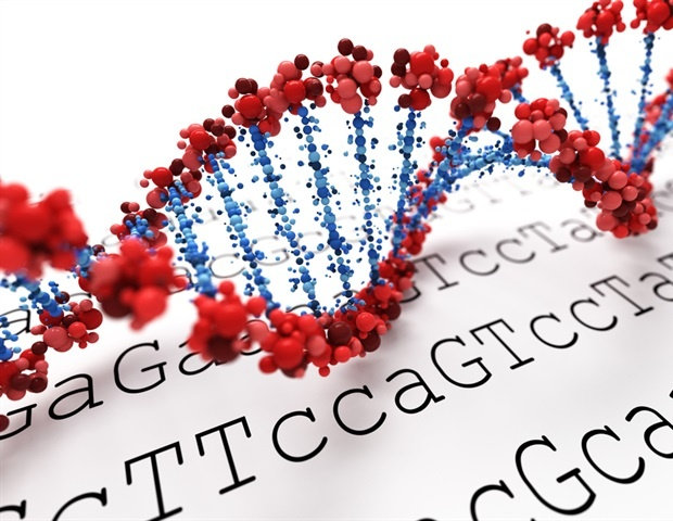 Novel insights into the genetics of autism