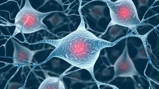 New drug that protects dopamine cells raises treatment hope for Parkinson's