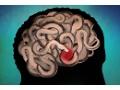 Understanding biological underpinnings of anxiety, phobias and PTSD