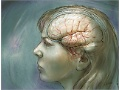 Researchers Focus on Recovery in Schizophrenia