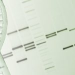 "NIH Discovers New ""Genomic Variants"" in Schizophrenia"