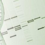 "NIH Discovers New ""Genomic Variants"" in Schizophrenia"