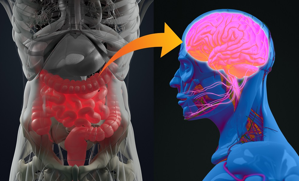 The Way to the Head May Be Through the Gut: Probiotics for