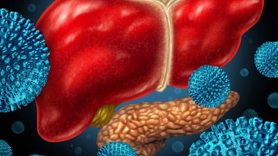 Hepatitis-liver-pancreas
