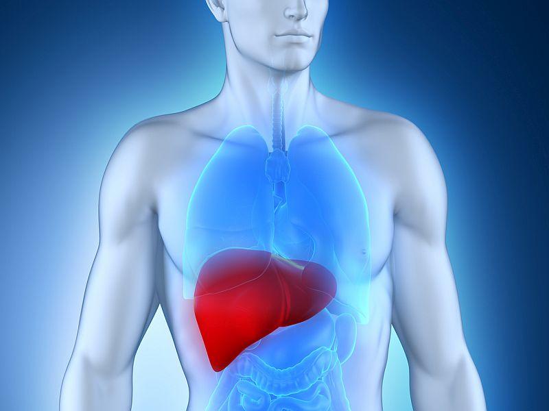 Liver Stiffness Linked to Hepatic Events, Death in Hepatitis B