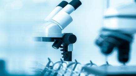 Research, microscope, lab