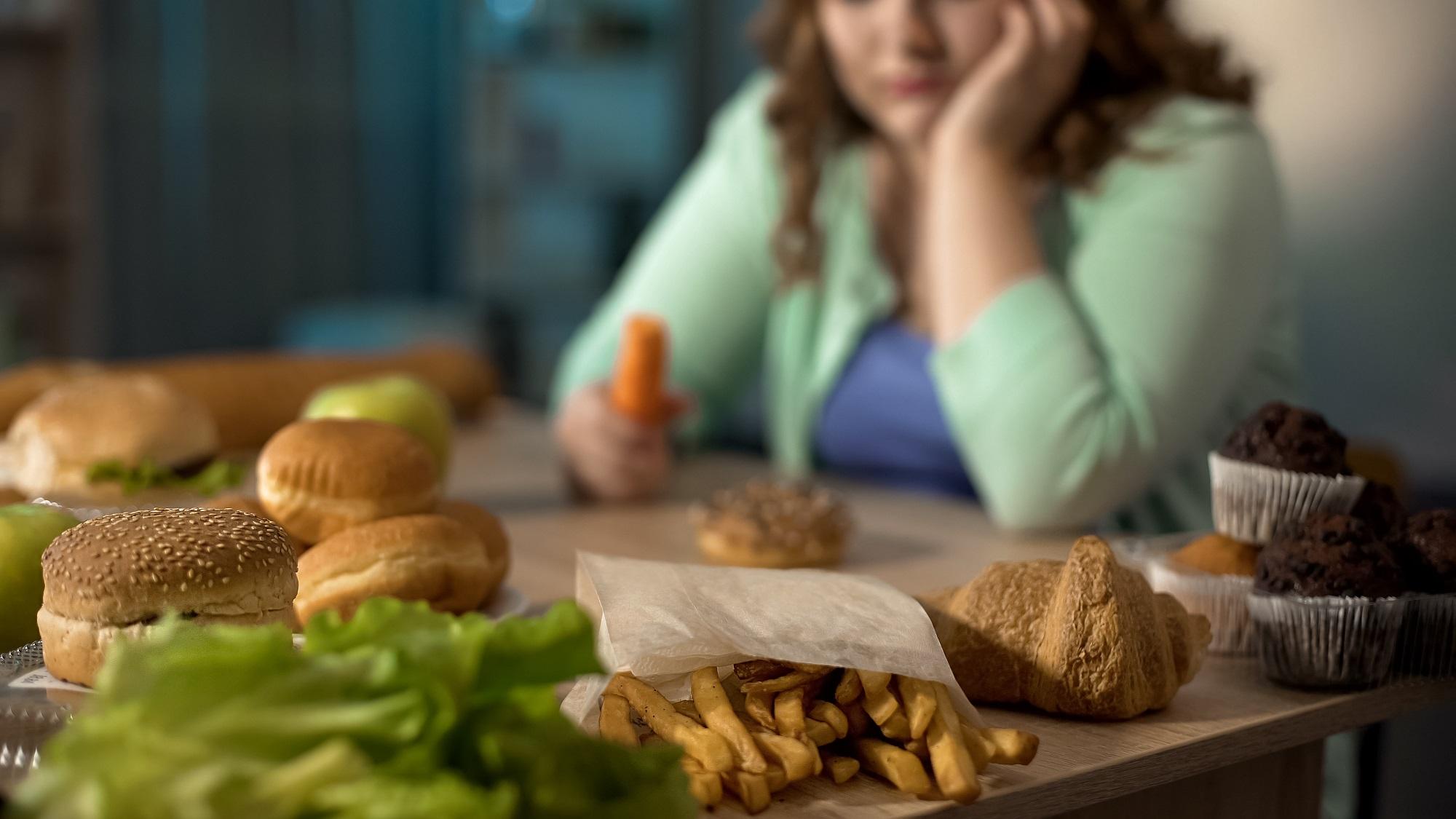 insecurity obesity에 대한 이미지 검색결과