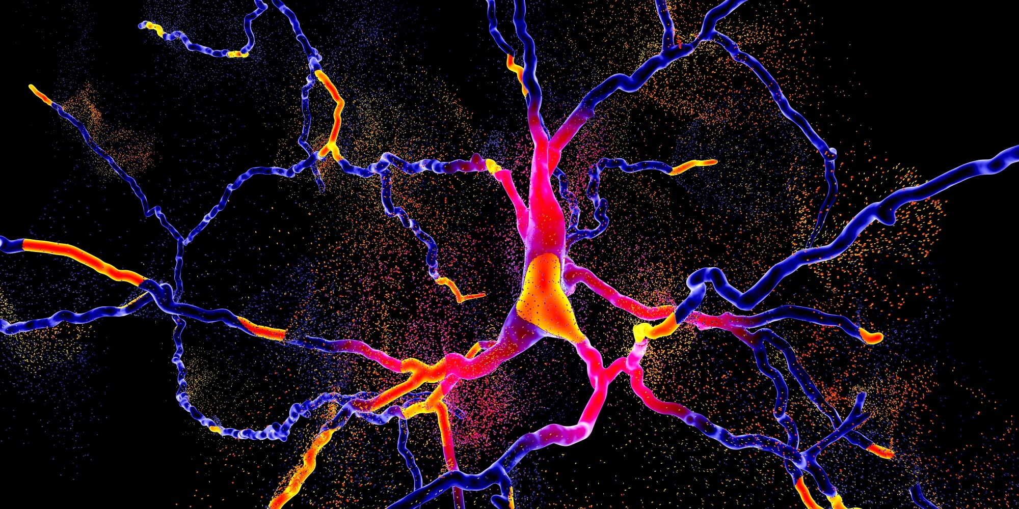 Image of a dopaminergic neuron