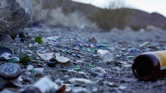 broken alcohol bottles on ground