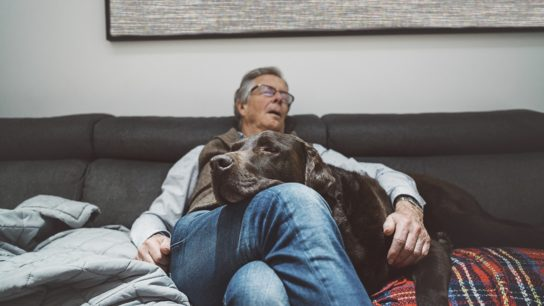 Senior man asleep on sofa with pet dog