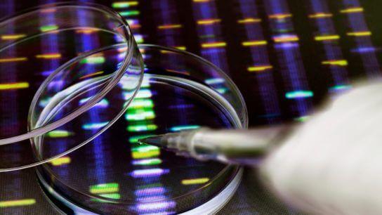 genetic.testing